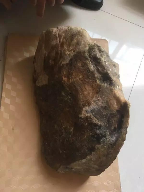 缅甸大马坎翡翠原石博罕见五彩翡翠熊猫