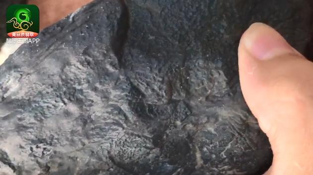 翡翠原石直播_莫西沙场口全身打灯不变种不变色高档翡翠原石视频直播解石