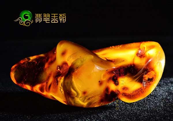 世界上最奇异的虫珀—蜥蜴琥珀、虾琥珀、蛇琥珀