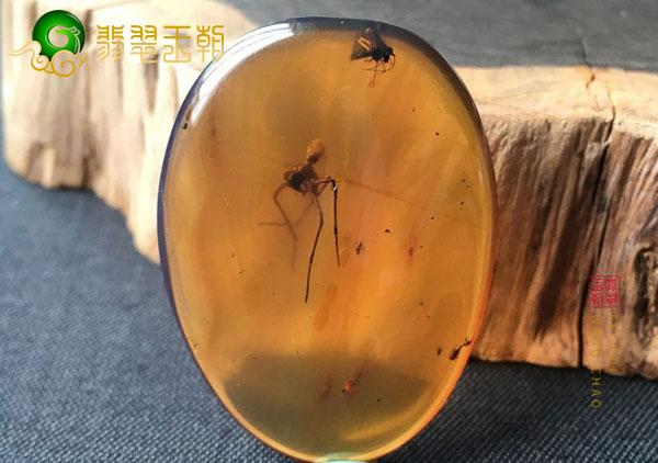 缅甸虫珀多少钱一克?影响虫珀吊坠价值的因素